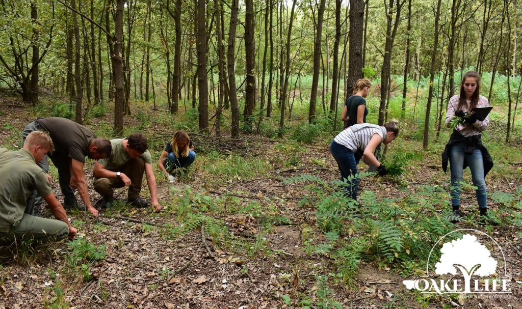 szie-természetvédelmi-mérnök-hallgatók-oakeylife-kunpeszér-peszéri-erdő-2020-szeptember Kunpeszér
