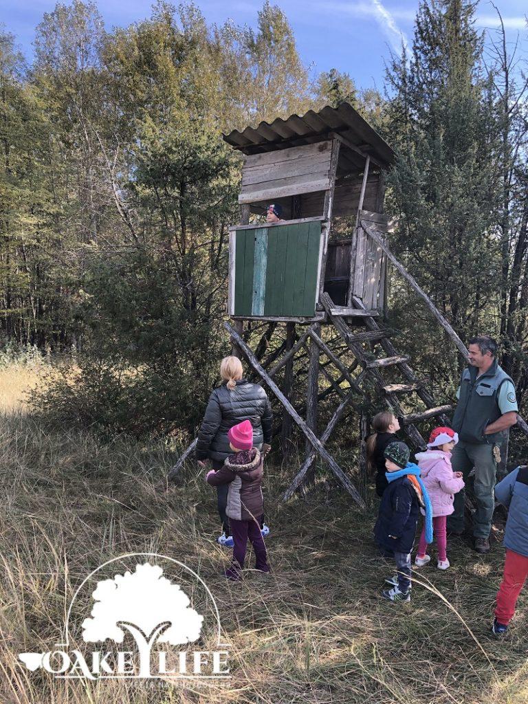 magasles-gyerekek-madarász-ovi-kunpeszér-peszéri-erdő-oakeylife