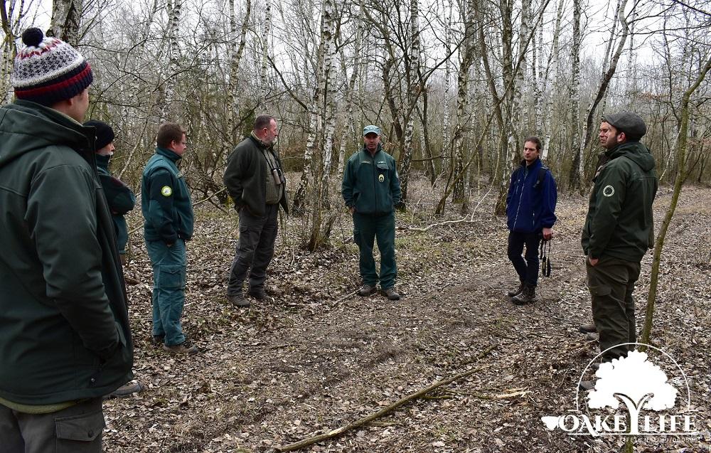 dinpi-peszéri-erdő-networking-oakeylife