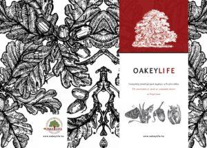 oakeylife-kiadvány-kulcs-fajok-2021-festmények-peszéri-erdő